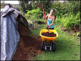 Shipment of soil - no soil in this lava land
