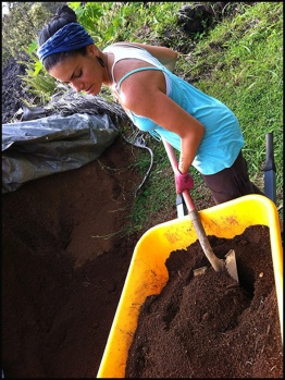 mixing it in with compost & organic fertilizers